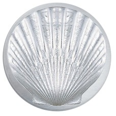 SEA SHELL MAGNET